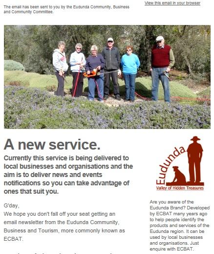 ECBAT Business Newsletter screen snap