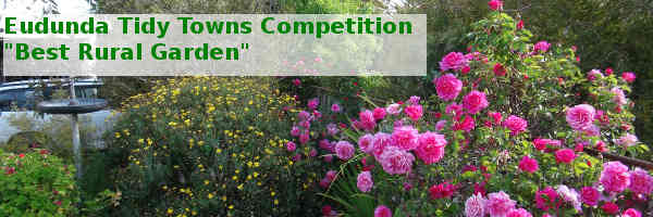 Eudunda Tidy Towns Competition - Best Rural Garden